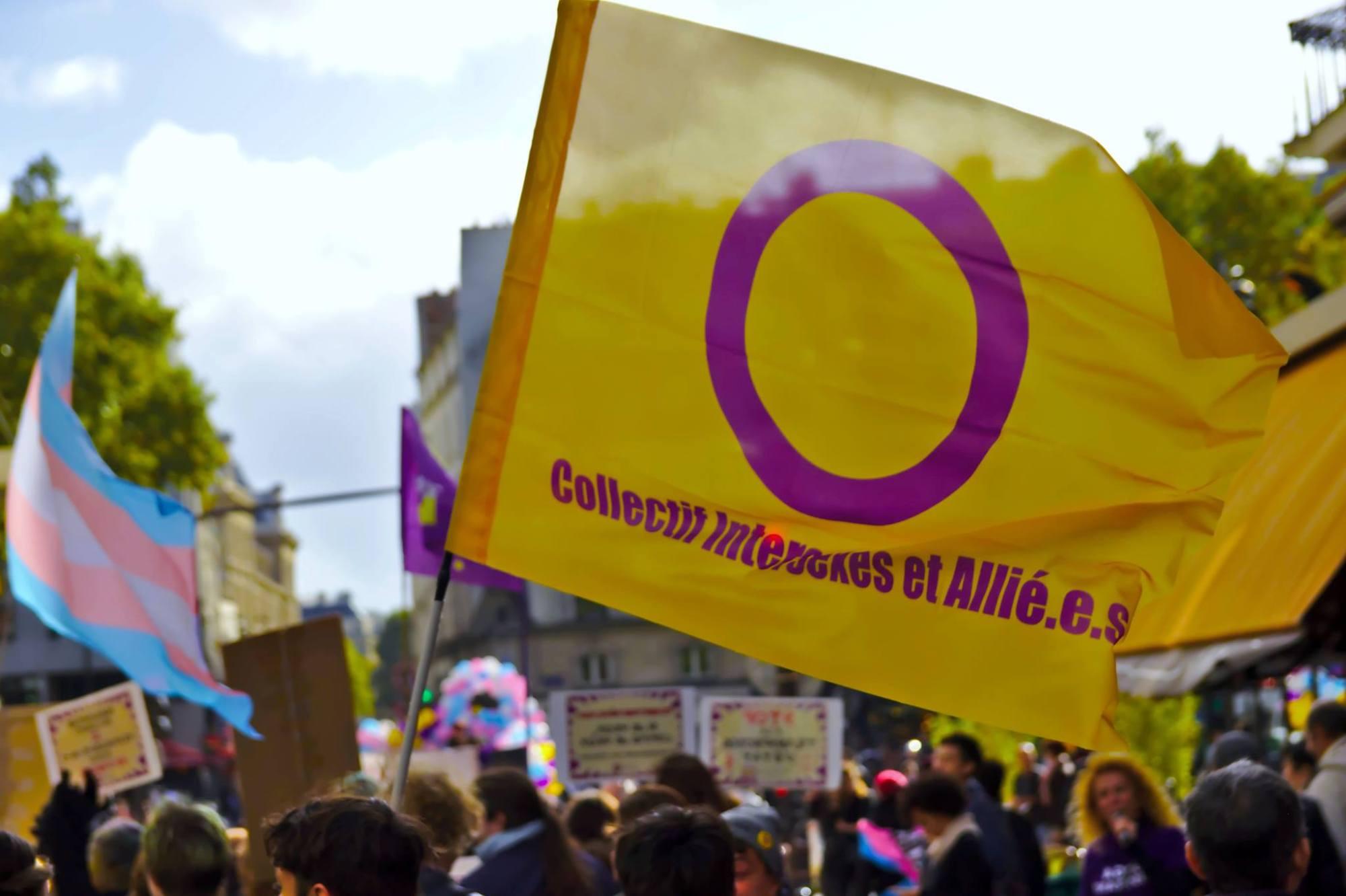 en manifestation : au premier plan un drapeau du collectif intersexes et alliés, en arrière plan un drapeau de la fierté transgenre